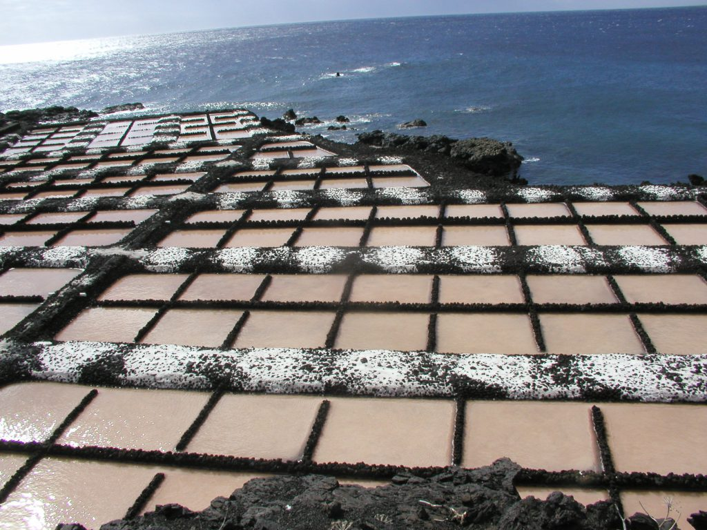 La Palma en FITUR - AGAP