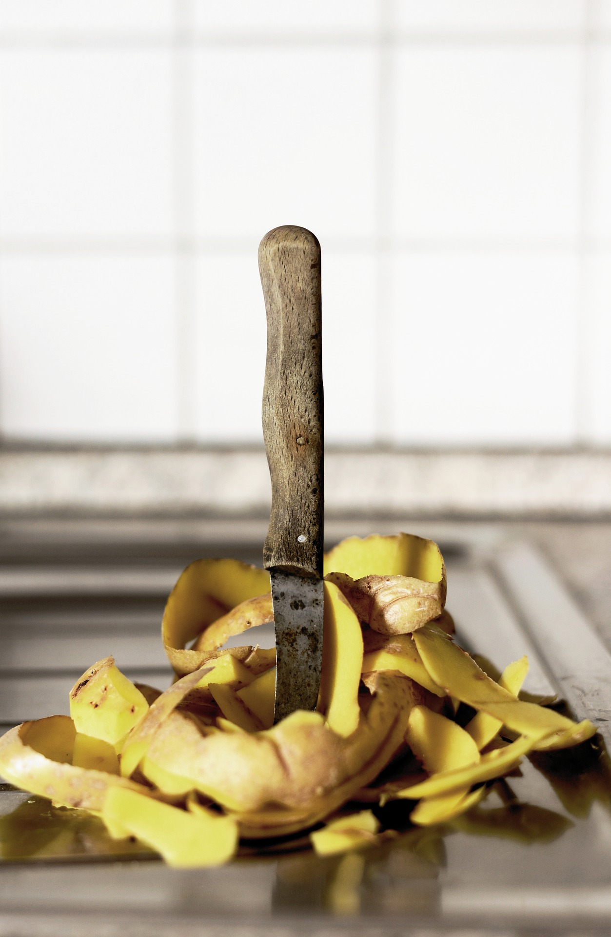 alimentos medio ambiente - agap