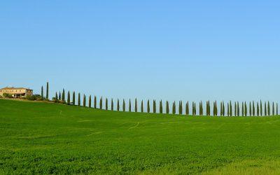 El agroturismo en Canarias investigado por la Universidad de La Laguna